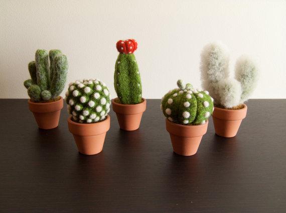 Vilten Cactussen Het Woonschrift