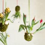 ideeën voor een verticaal tuintje